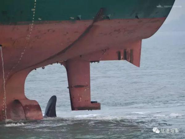 极其罕见:Panamax锚地试车,17.5吨的螺旋桨丢了