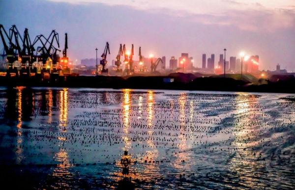 集装箱港区5年完成搬迁,港口资源开启整合,这个港口将冲击世界十大港