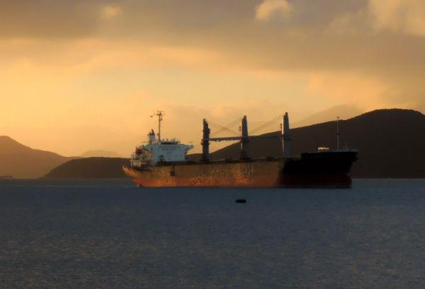 Safe Bulkers将为船队中的一半船舶安装洗涤器